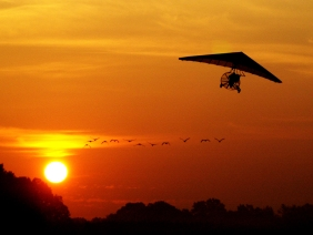 Ultralight pilot Deke Clark takes off from a grass airfield in Zebulon, Ga with 12 Sandhill Cranes following. The birds are learning a fall migration route from Wisconson to Flordia.